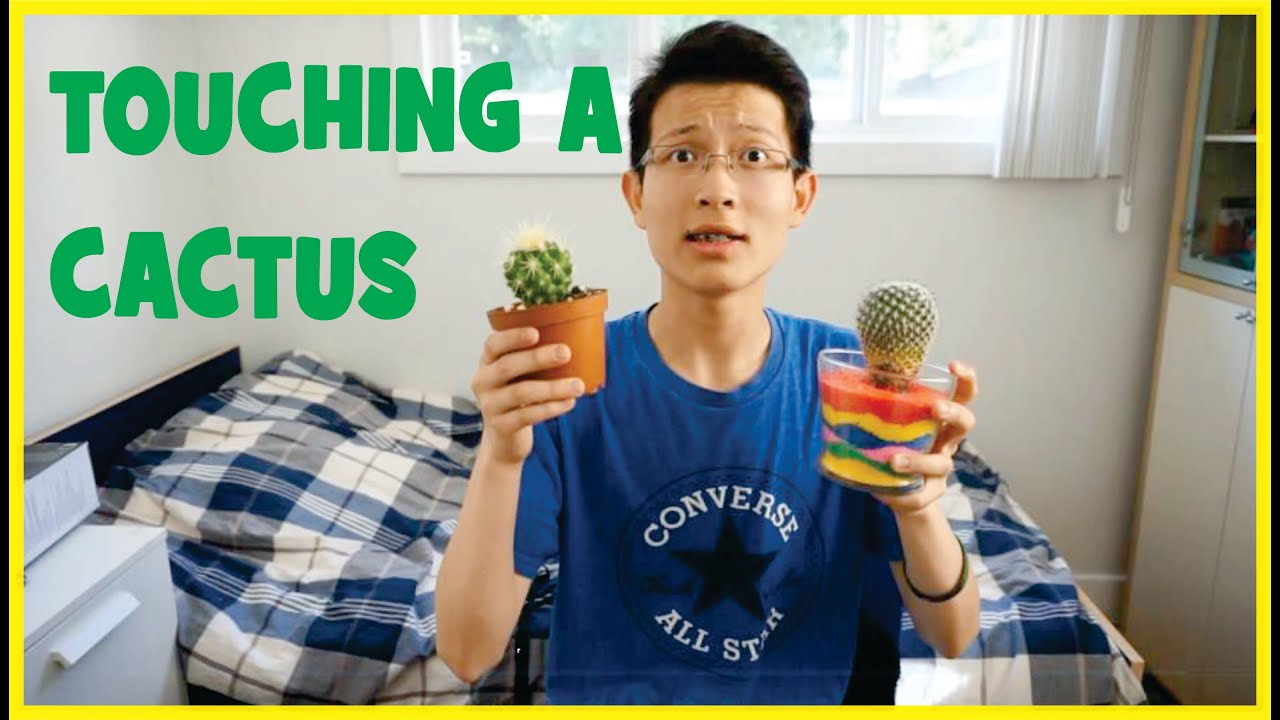 Pricked By A Cactus! + Cactus FACTS - YouTube