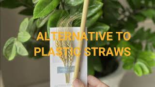 QA Bamboo Straws Alternative to plastic straw