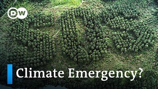 11,000 scientists warn of climate emergency and demand radical action   DW News
