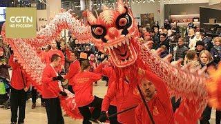 Праздник Весны в Хельсинки: Китайские драконы, ледовые скульптуры, новогодние угощения и фейерверки