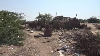 قصف مليشيات الحوثي في المتينة إجرام دمر المنازل وقتل الإنسان والحيوان