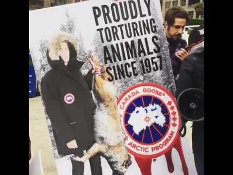 canada goose jackets protest