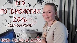 ЕГЭ 2016 по биологии. Разбор вопросов 29-30.
