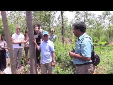 Visit to Natural Remedies (An Agricultural Farm) by Dr Seshagiri Rao