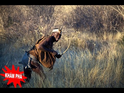 Khám Phá - Cách đi săn độc đáo của thổ dân Kalahari