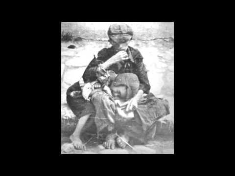 Holocaust Human Nature