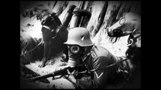 Почему Гитлер не применил химическое оружие