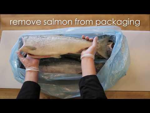 How to Thaw & Fillet a Wild Alaska Salmon