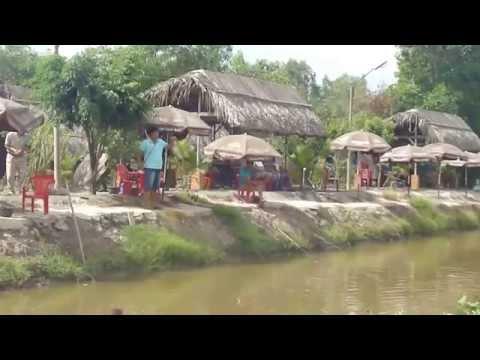 Câu cá lóc - GIải câu hồ câu cá Vĩnh Lộc p2 - tgcc