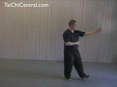 24 Form Tai Chi - Lesson 8 - Repulse the Monkey
