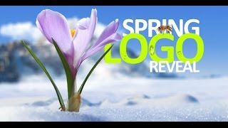 Spring Logo Reveal - After Effects Template