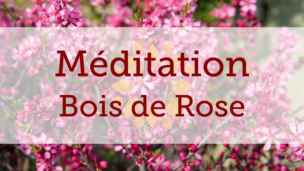 Méditation olfactive : Bois de Rose