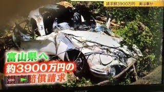 Man sues Toyama Prefecture over loss of classic Toyota 2000GT due to falling tree