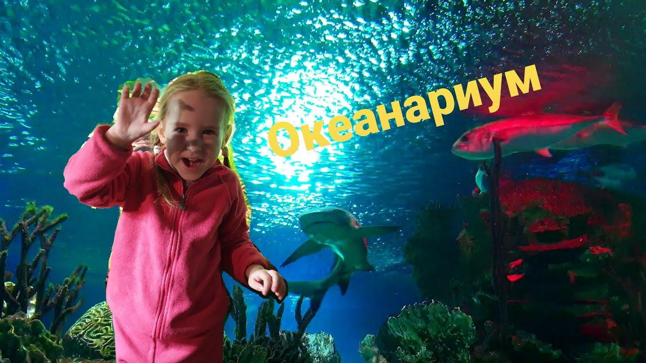 Океанариум Ксюшенька отправляется на поиск акул!!! Видео для детей
