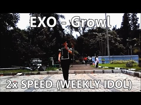 EXO - Growl Dance Cover (2x speed weekly idol)
