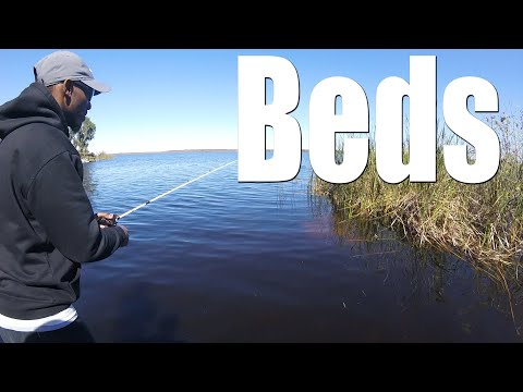 Bed Fishing Lake Panasoffkee   He Got One!