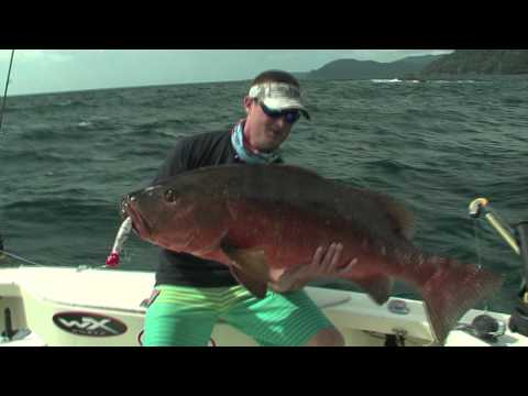 Captain Jimmy Nelson Catching Cubera Snapper in Panama