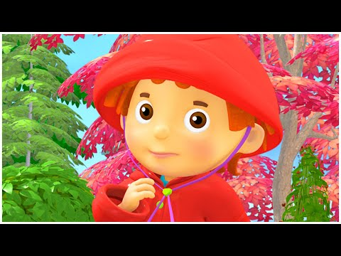 Cartoon for kids | Weather Station | Compilation | Everythings Rosie