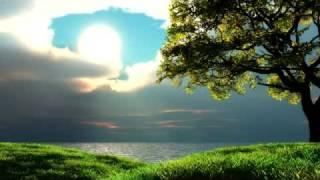 sarah-mclachlan---the-first-noel-dj-shah-remix-merry-xmas