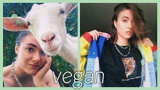 🌿 dit is wat 1 jaar vegan zijn met je doet 🌿