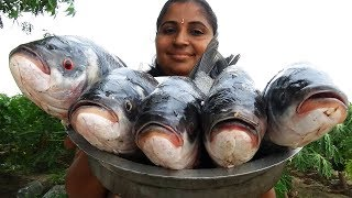 10KG Big Katla Fish Fillet & Katla Fish Fry Recipe Cooking Traditional Way In Farm land | BBQ Fishes