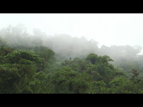 Costa Rica advances the global conversation on planet conservation