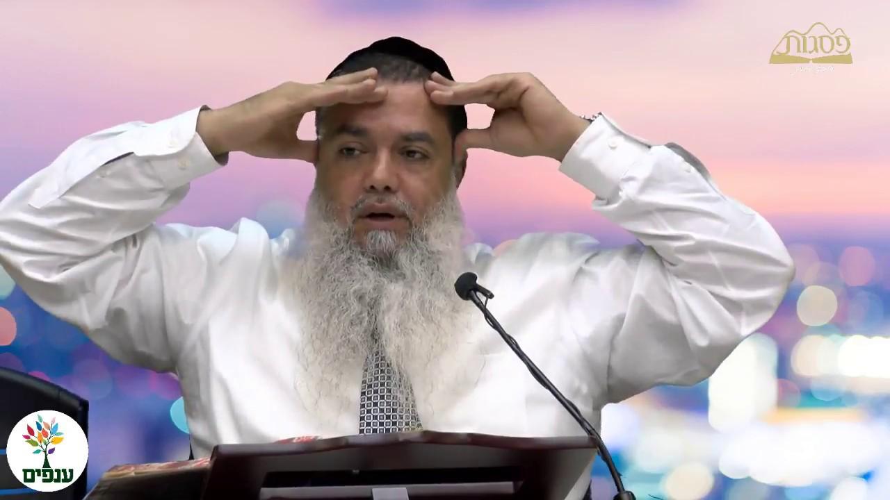 כבוד תלמידי חכמים - הרב יגאל כהן HD