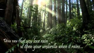 Unfolding Rainforest - Guitared by Satadal Ray