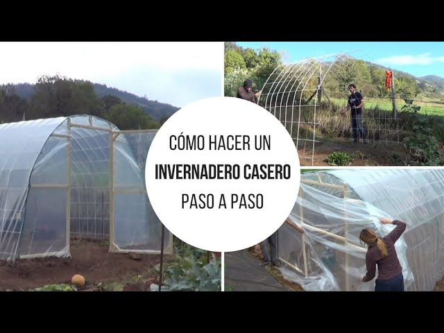 Invernadero Casero Mas Barato Del Mundo Como Hacerlo Paso A Paso La Huertina De Toni Youtube