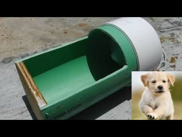 DIY Automatic Dog Watering Bowl Turnover Spill Proof