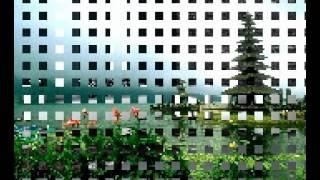 Pani Pati Tilawat Qari Umar Tanveer Raheemi Part 1.mp4