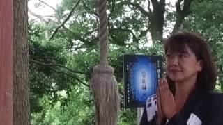 生活の党と山本太郎となかまたち・小沢代表の父親の故郷には北辰妙見思...