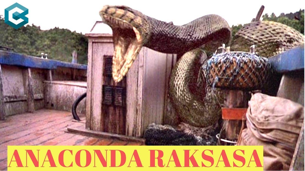 Download ANACONDA RAKSASA GANAS DAN MENGERIKAN,  BISA SEMENAKUTKAN SEPERTI INI SAAT DIFILMKAN HOLYWOOD!