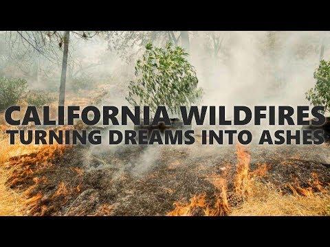 California Wildfires Decimate Cannabis Farms