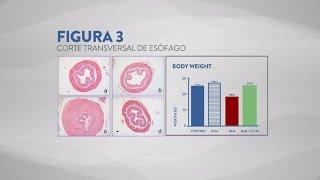 Tratamiento Contra La Esclerodermia - Resultados Cientificos