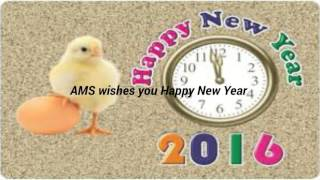 vuclip Happy New Year