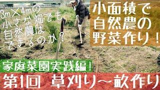 【家庭菜園実践編】①自然農法的に畝作り《My畑を作ろう!》2019年4月3日農業ユーチューバー