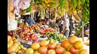 KARURUMO: Enabling farmers enjoy maximum turnover of their farm produce - part 1