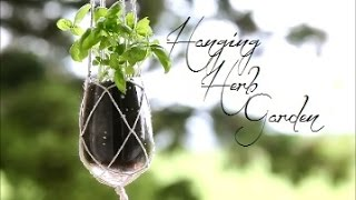 Growing your own herbs at home has never been easier. Make a hangin...