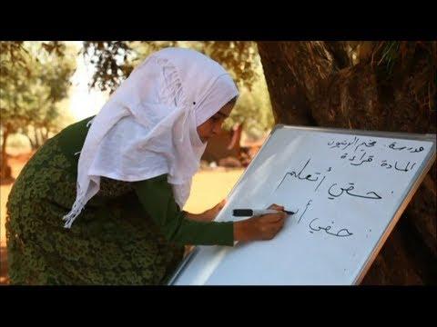تحت شعار من حقي اتعلم .. مدرس يتطوع لتعليم أطفال نازحين بين أشجار مخيم الزيتون  - نشر قبل 2 ساعة