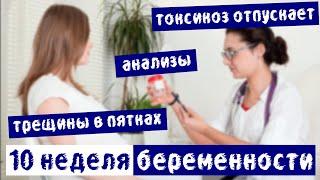видео Анализы при беременности: список по неделям