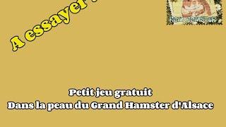 """Jeu """"Dans La Vie du Grand Hamster d"""