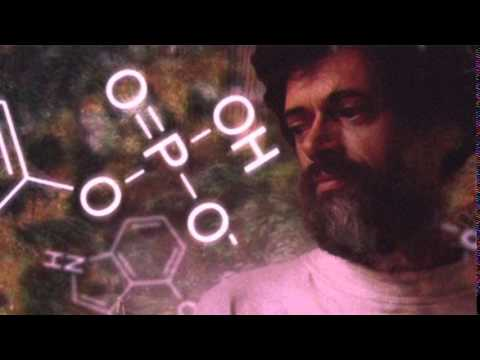 Terence Mckenna - Human Civilization and the Archaic Revival