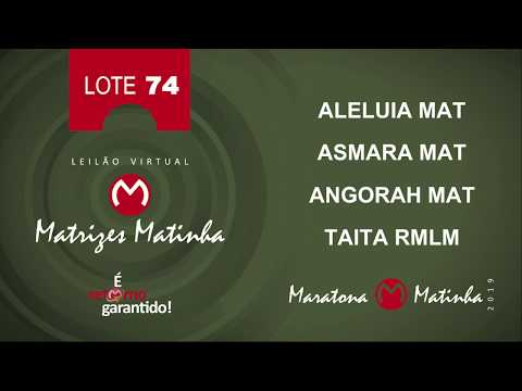 LOTE 74 Matrizes Matinha 2019