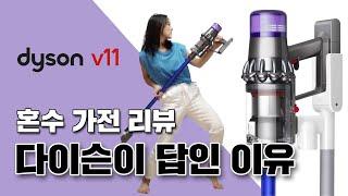 [애슐리뷰] 다이슨 V11 과 V8 무선 청소기 비교 …