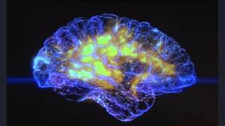 Gaming and the brain