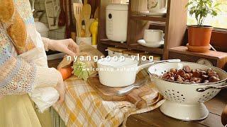 냥숲 vlog | 달콤 쌉싸름한 집밥일상. 방구석 취미…