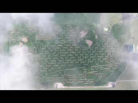Shryocks Callaway Farms Moon Maze