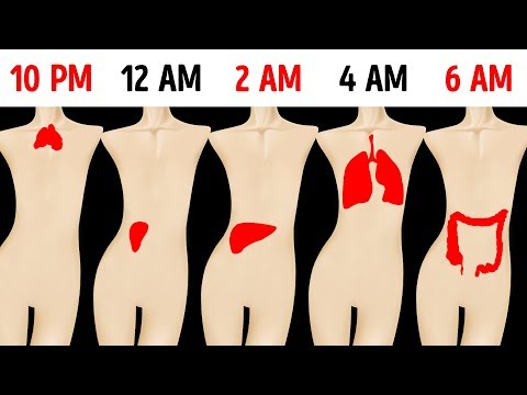 Why You Keep Waking Up at the Same Time Every Night