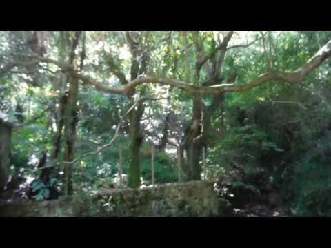 Serra de Sintra (HD)